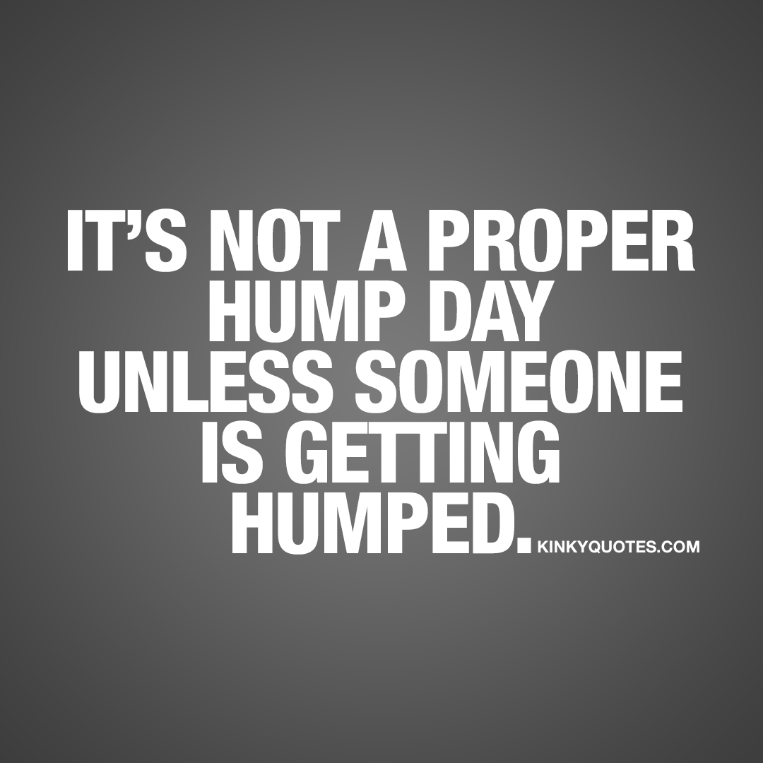 It's not a proper hump day unless someone is getting humped.