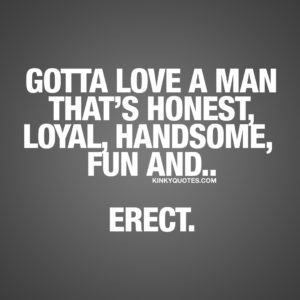 Fun naughty quote: Gotta love a man that's honest, loyal, handsome, fun and.. Erect